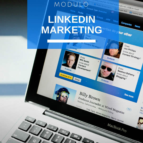 Modulo Linkedin Marketing