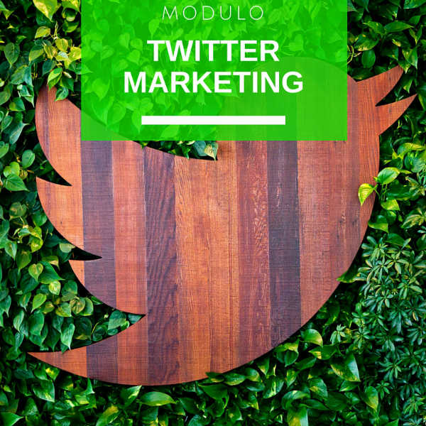 Modulo Twitter Marketing