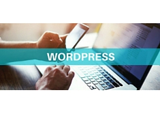 Miniguida: WordPress