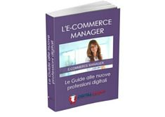 E-book: E-commerce Manager pdf