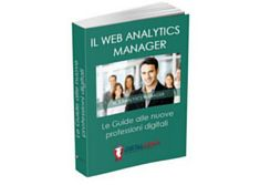 E-book: Web Analytics Manager pdf