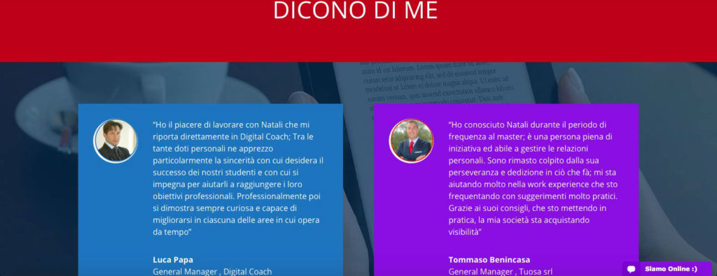 professional-website-diconom-di-me