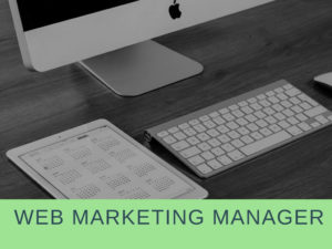 lavoro-web-marketing-manager