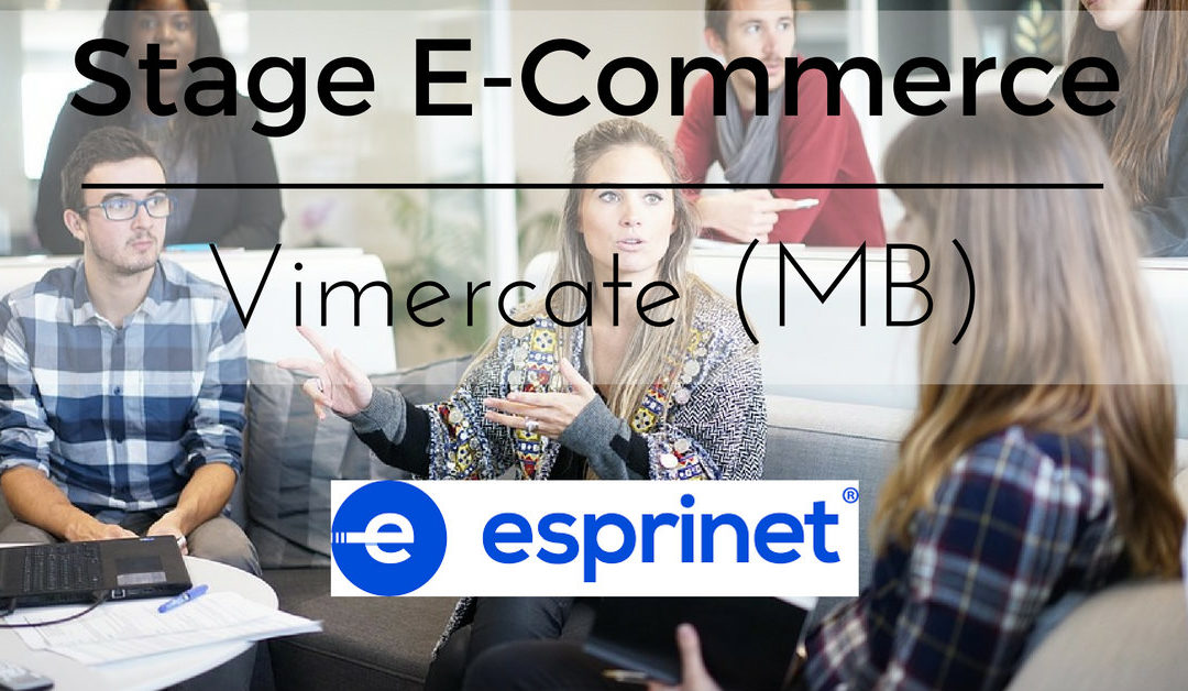 Stage Area E-Commerce – Vimercate – Esprinet