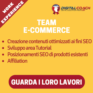 team e-commerce