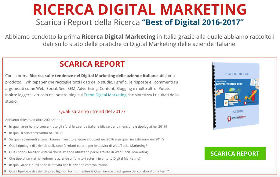 Report Ricerca Digital Marketing