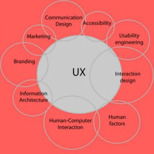 lavoro user experience competenze