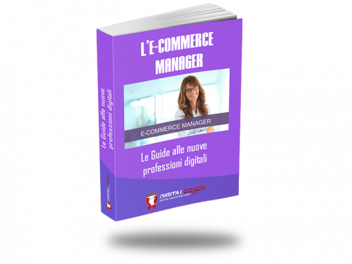 E-book: E-commerce Manager