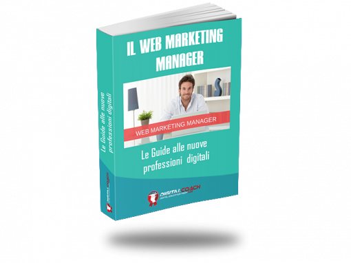 E-book: Web Marketing Manager