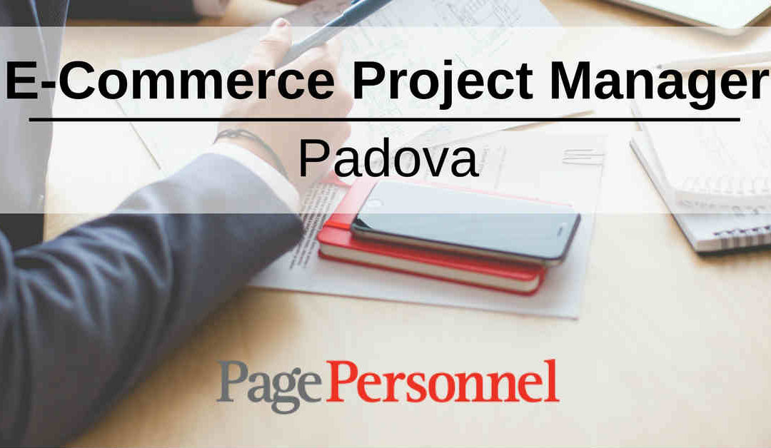 E-Commerce Project Manager – Padova – Page Personnel Italia