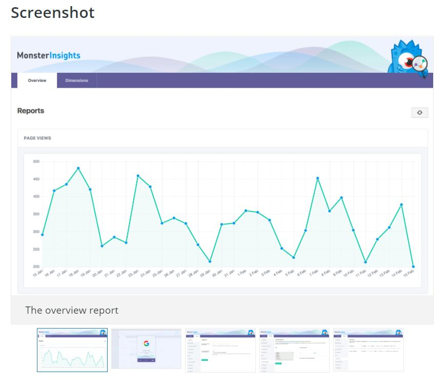 Google Analytics WordPress MonsterInsights Funzioni Screenshot