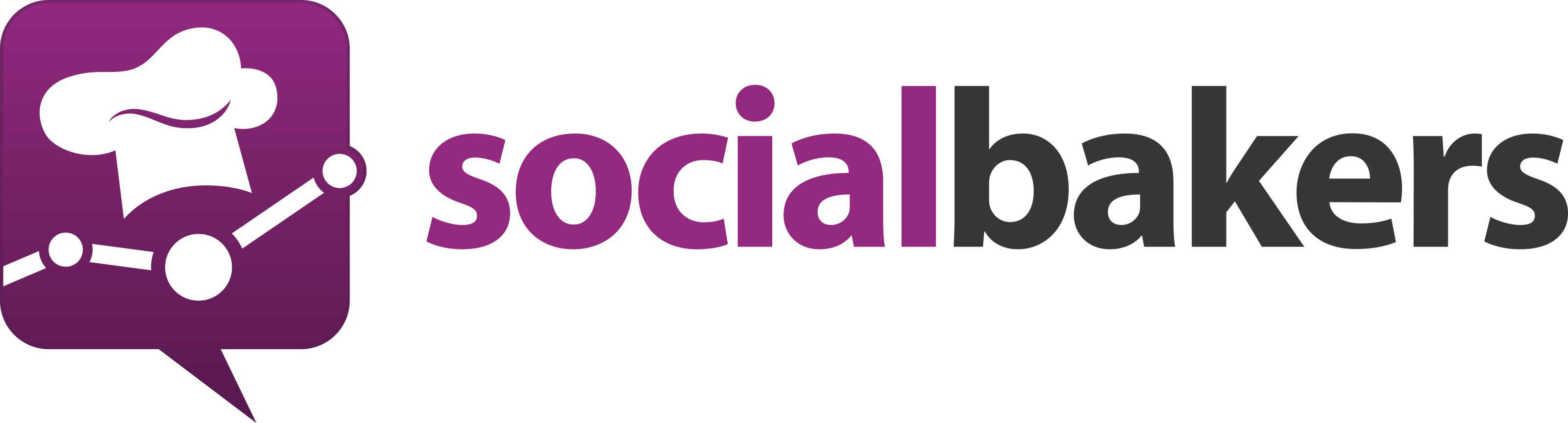 Social Media Analytics Tools Socialbakers Icon