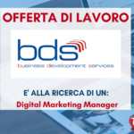 BDS - Business Development Services