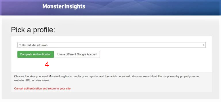 Google Analytics Tracking Code MonsterInsights Site